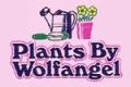 Plants By Wolfangel